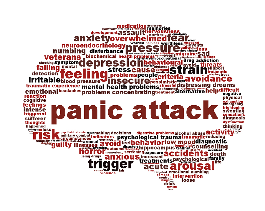 Image result for Panic Attack Disorder Anxiety